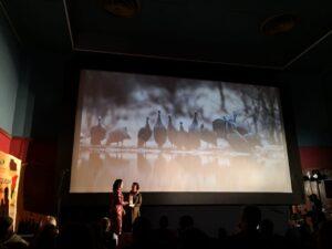 International Tourism Film Festival Africa (ITFFA) Award Ceremony 2021